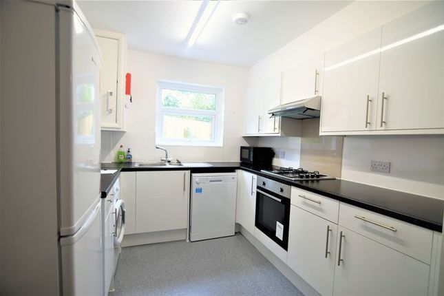 Thumbnail Property to rent in Haig Avenue, Brighton