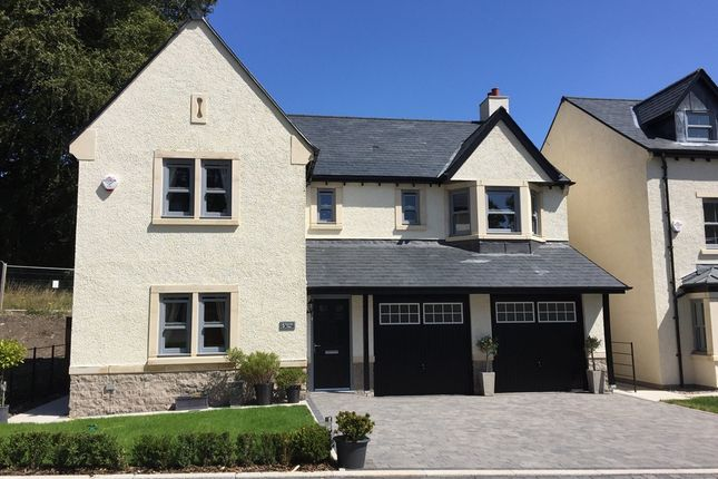 "Thumbnail Detached house for sale in ""Wilfred"" at Ulverston"