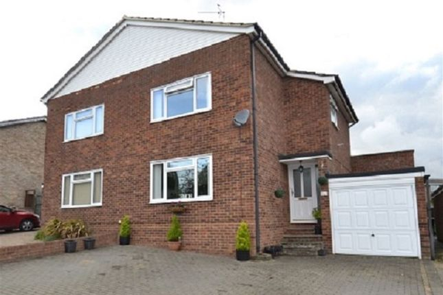 Thumbnail Property for sale in Monks Walk, Buntingford