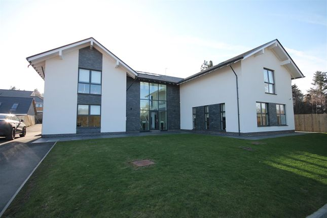 Thumbnail Property for sale in Telfer Court, Garrion Bridge, Clyde Valley