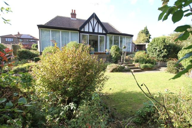 Thumbnail Detached bungalow for sale in The Avenue, St. Margarets-At-Cliffe, Dover