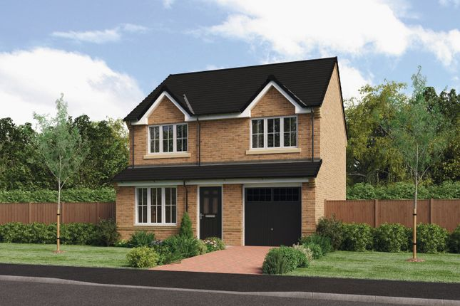 Thumbnail Detached house for sale in Brandling Way, Hadston, Morpeth