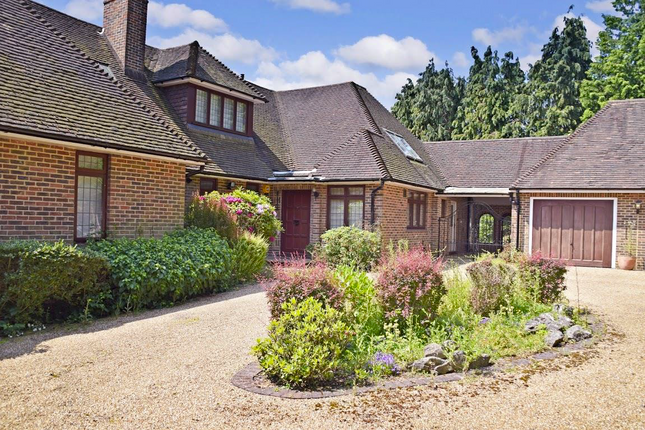 Thumbnail Detached house for sale in Birch Hill, Surrey, Croydon