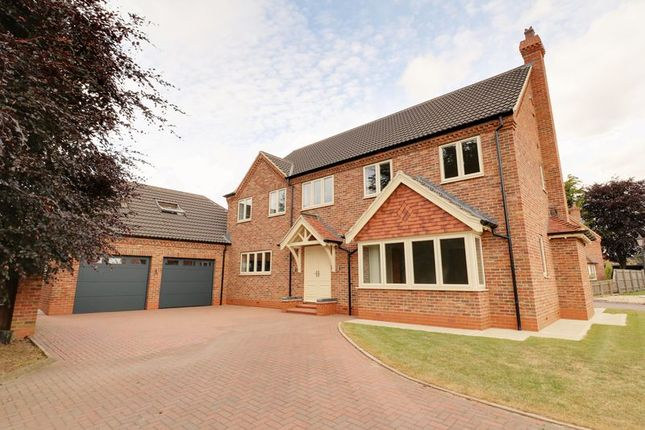 Thumbnail Detached house for sale in The Briars, Broughton, Brigg