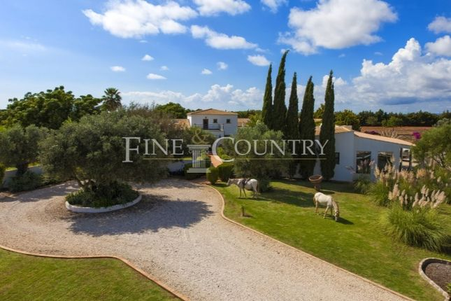 Thumbnail Detached house for sale in Silves, Silves, Faro