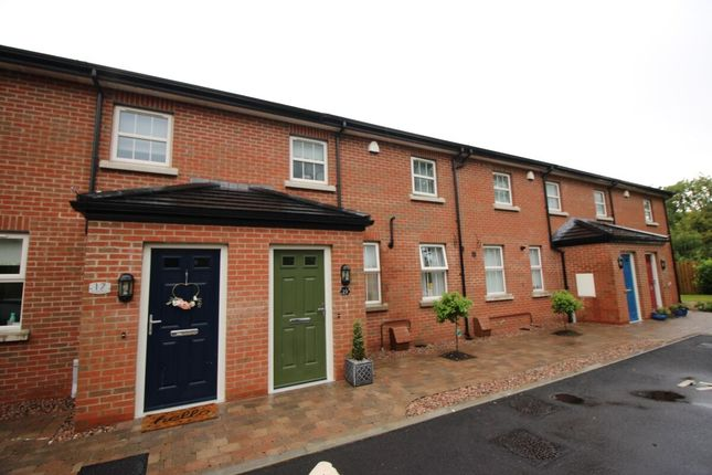 Thumbnail Terraced house for sale in Meadow Place, Lisburn