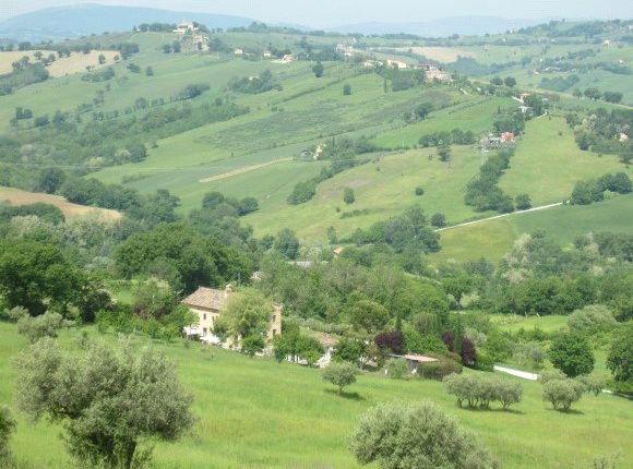 Picture No. 09 of Casa Antonella, Colmurano, Le Marche