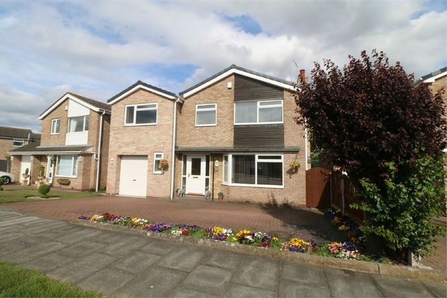 Thumbnail Detached house for sale in Stoops Lane, Bessacarr, Doncaster, South Yorkshire