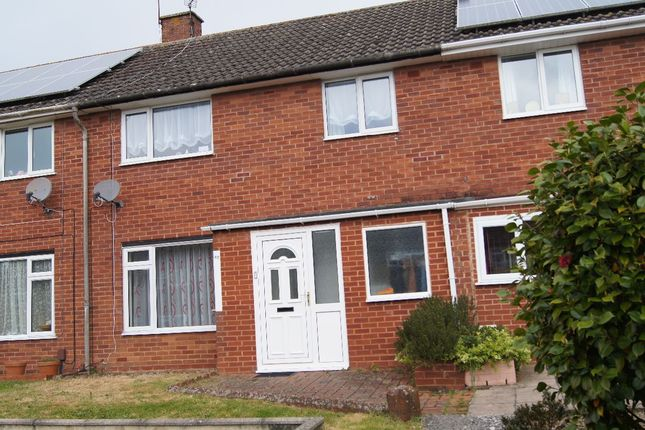Thumbnail Terraced house to rent in Pellinore Road, Exeter