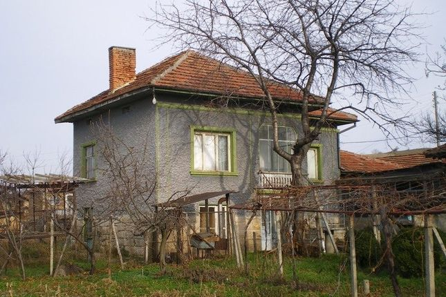 Ruse District, Village Of Krivina, 1 Km From River Danube
