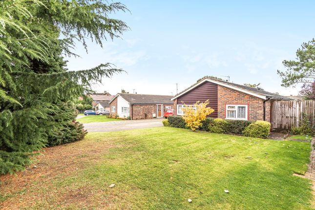 Thumbnail Detached bungalow for sale in Oliver Road, Horsham