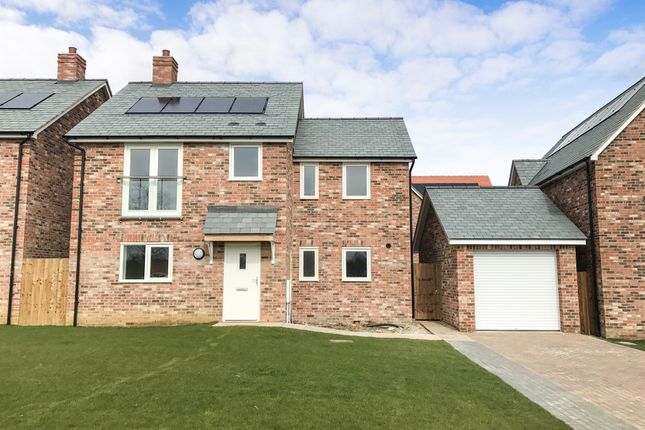 Thumbnail Detached house for sale in Littleton Meadows, South Littleton, Evesham