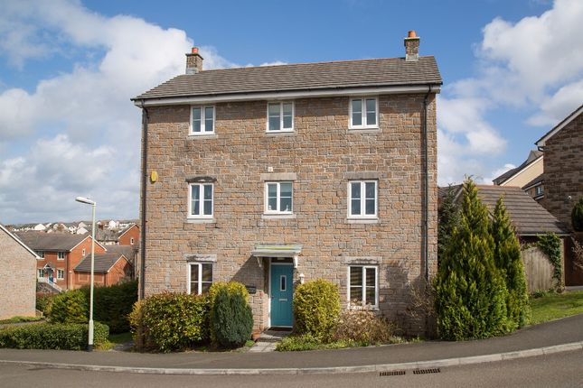 Thumbnail Property for sale in De Brionne Heights, Okehampton