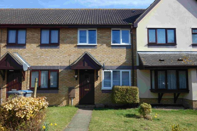 Thumbnail Terraced house to rent in Stewart Young Grove, Grange Farm, Kesgrave, Ipswich Suffolk