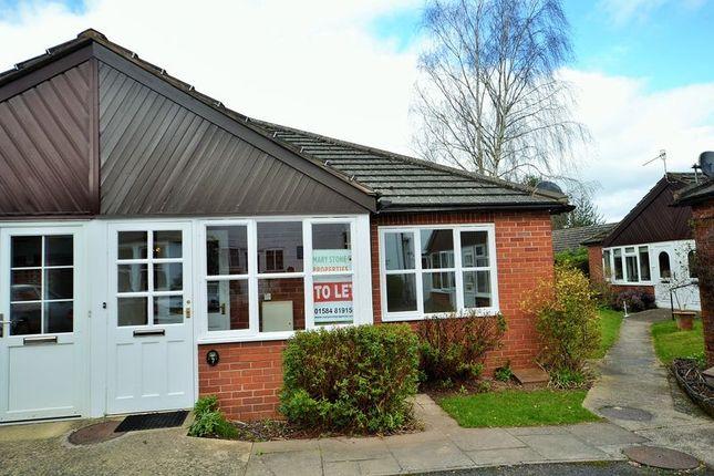 Thumbnail Semi-detached bungalow to rent in College Gardens, Tenbury Wells