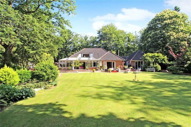 Thumbnail Detached bungalow for sale in Long Road, Framingham Earl, Norwich, Norfolk