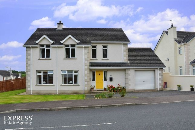 Thumbnail Detached house for sale in Sherbourne Heights, Magherafelt, County Londonderry