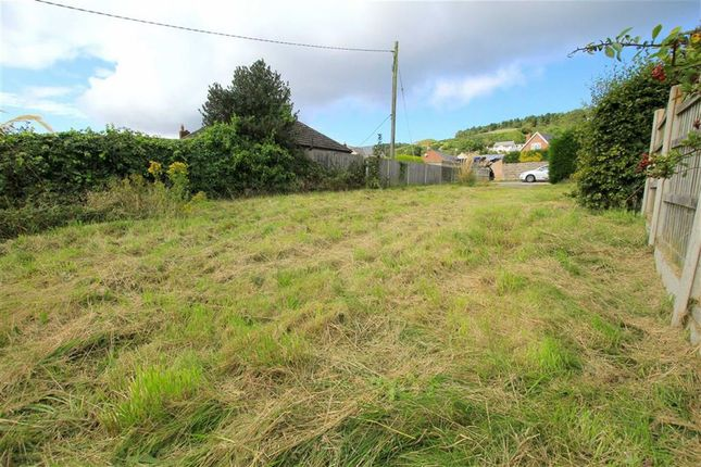 Property For Sale With Land Flintshire And Denbighshire
