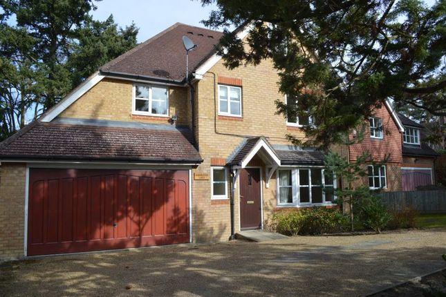 Thumbnail Property to rent in Lytton Road, Woking