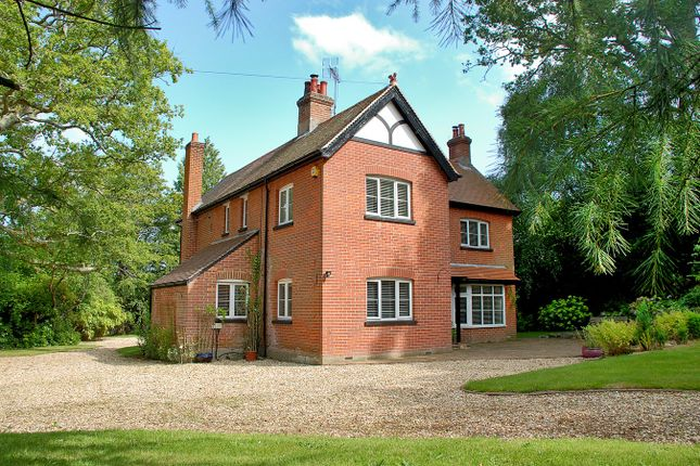 Thumbnail Country house for sale in Forest Road, Burley