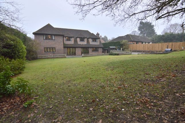Thumbnail Detached house for sale in High Pasture, Little Baddow, Essex