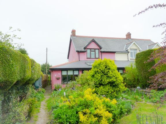 Thumbnail Cottage for sale in Oldways End, East Anstey, Tiverton