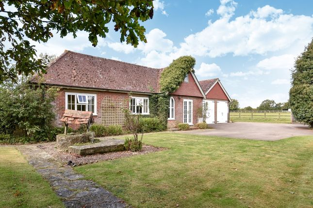 Thumbnail Equestrian property for sale in Horsham Road, Walliswood, Dorking