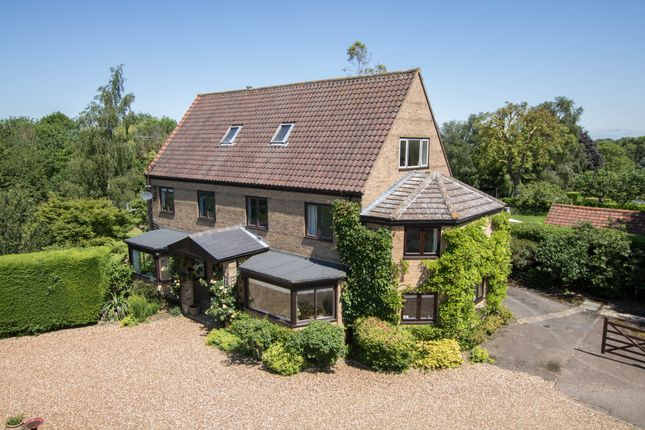 Thumbnail Detached house for sale in Walden Road, Hadstock, Cambridge