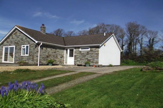 Thumbnail Bungalow to rent in St. Issey, Wadebridge