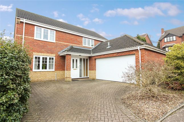 Thumbnail Detached house for sale in Chestnut Hill, Eaton, Norwich