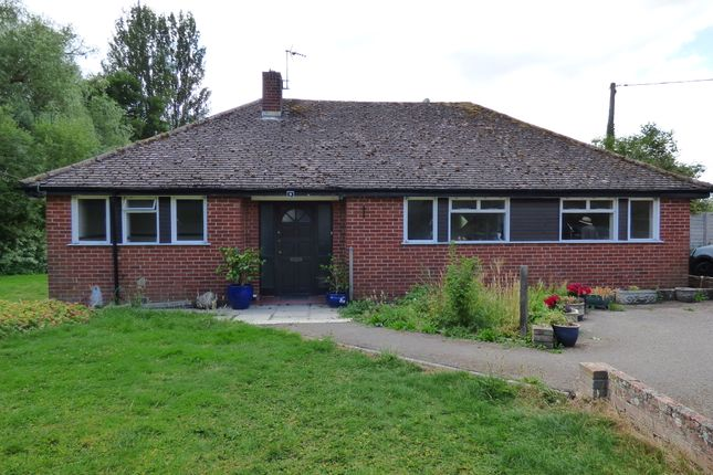 Thumbnail Detached bungalow for sale in Frog Lane, Motcombe