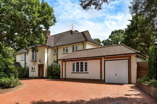 Thumbnail Detached house to rent in Heath Rise, Camberley, Surrey