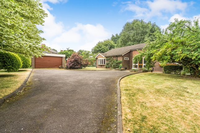 Thumbnail Detached bungalow for sale in Elwell Crescent, Dudley