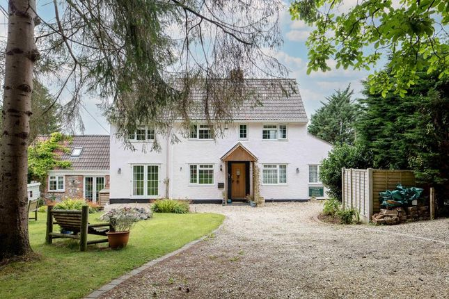 Thumbnail Detached house for sale in Main Road, Brockley