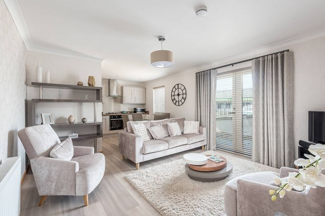 Thumbnail Flat for sale in Arbroath, Angus