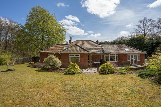 4 bed detached bungalow for sale in Folgate Lane, Costessey, Norwich NR8