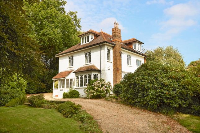 Thumbnail Detached house to rent in Friday Street, Ockley, Dorking