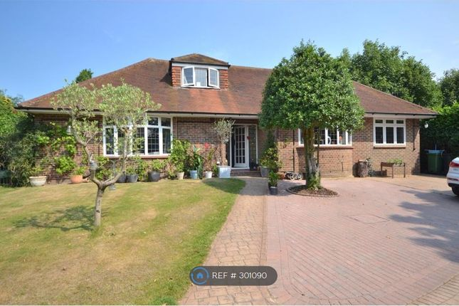 5 bed detached house to rent in Orchard Drive, Woking
