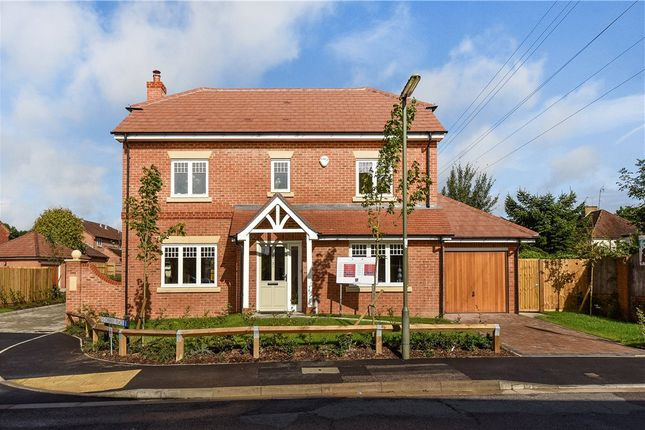 Thumbnail Detached house for sale in Stockwood Way, Farnham, Surrey