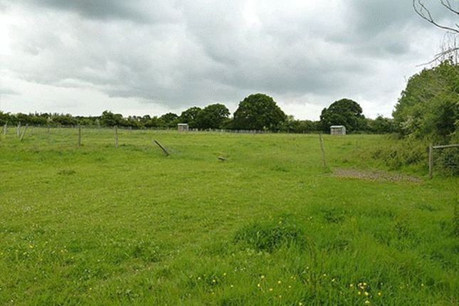 Thumbnail Land for sale in Kelvedon Road, Tolleshunt D'arcy, Maldon