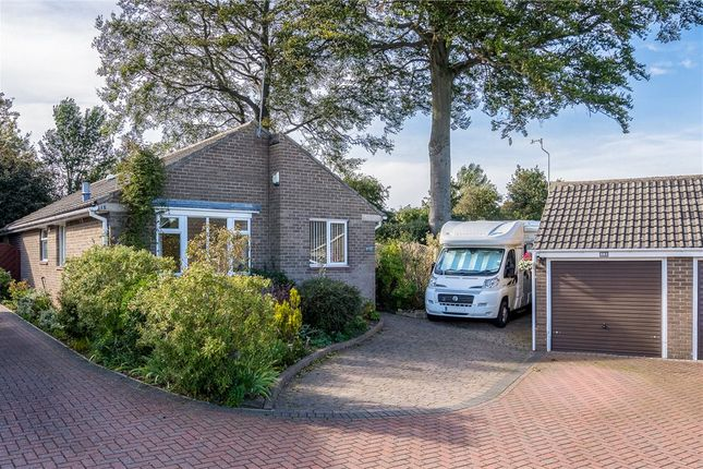 Thumbnail Detached bungalow for sale in Malham Way, Knaresborough, North Yorkshire