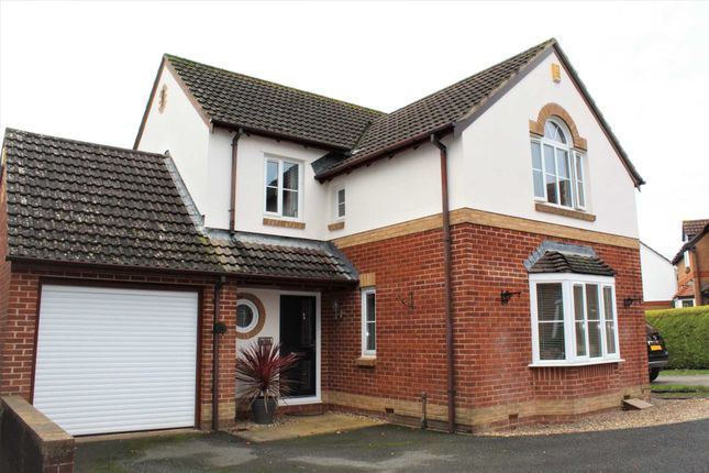 Thumbnail Detached house for sale in Coleridge Close, Exmouth
