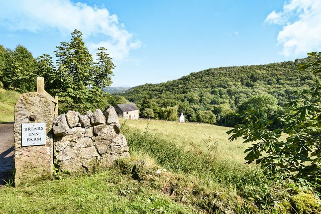 Thumbnail Property for sale in Black Tor Road, Slaley, Bonsall, Matlock
