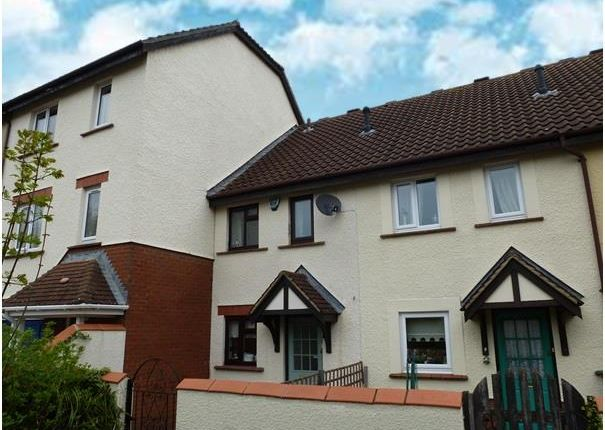 Thumbnail Property to rent in Fivash Close, Taunton