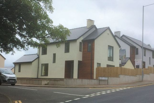 Thumbnail Detached house for sale in Lodgewood Estate, Pontypool