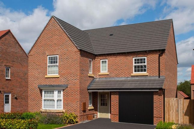 "Thumbnail Detached house for sale in ""Exeter"" at Southern Cross, Wixams, Bedford"
