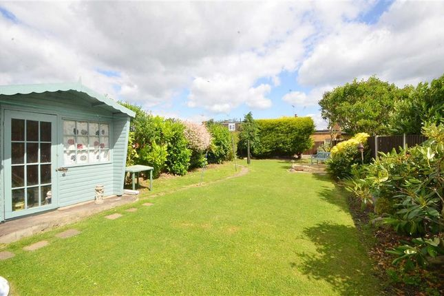 Thumbnail Semi-detached bungalow for sale in Marshalls, Rochford, Essex