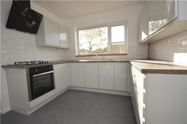 Thumbnail Detached bungalow to rent in Paynes Meadow, Whitminster, Glos.