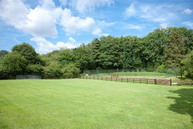 Paddock of Parkwater Lane, Whiteparish, Salisbury SP5
