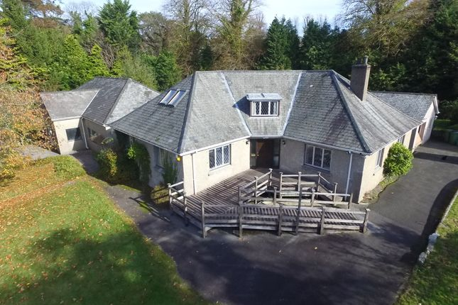 Thumbnail Detached bungalow for sale in Down Road, Tavistock